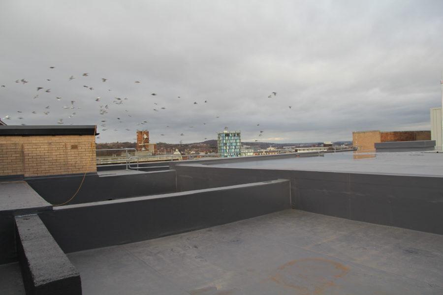 primark_roof_refurbishment-single_ply_2