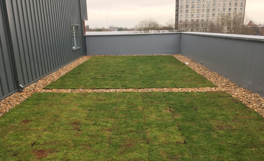 green_podium_roof