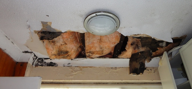 "Failure due to poor ventilation of a ""Cold Roof"" design"