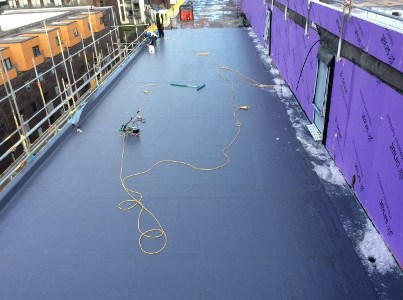 Installation of single ply in cold weather